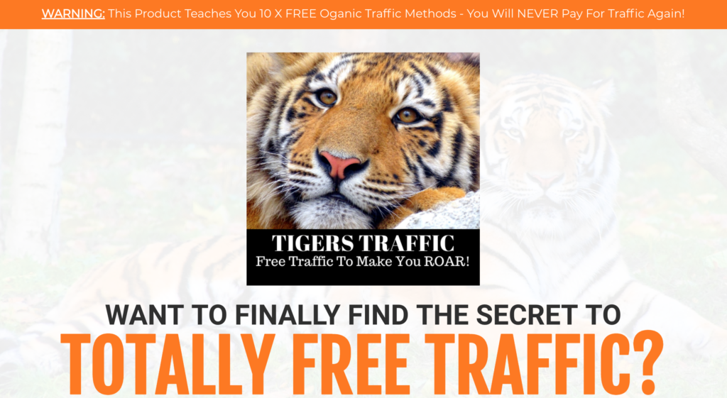 Tigers Traffic Review