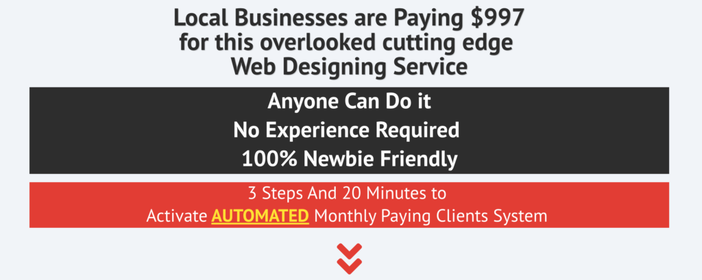 Confession of A Web Design Consultant Review