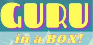 [PLR] Guru in a Box Review